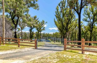 Picture of 44 Shani Place, Bimbimbie NSW 2536