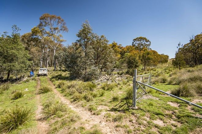 Picture of Lot 124/754911 512 Dicks Creek Road, YASS RIVER NSW 2582