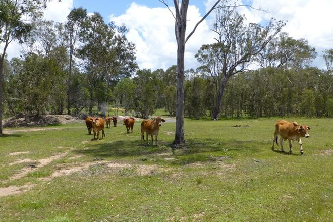 Picture of 27369 BRUCE HIGHWAY, ISIS RIVER QLD 4660