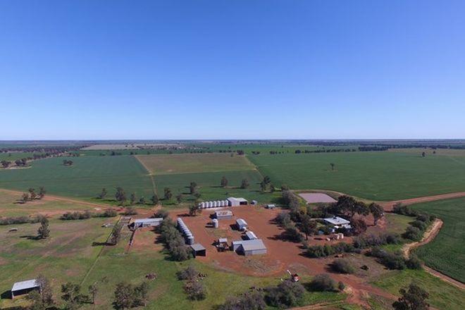 Picture of COROBIMILLA NSW 2700