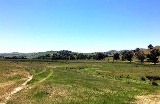 Picture of Lot 5 Readfords Road, Gundagai NSW 2722
