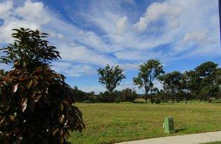 Lot 516 Portrush Avenue, Cessnock NSW 2325