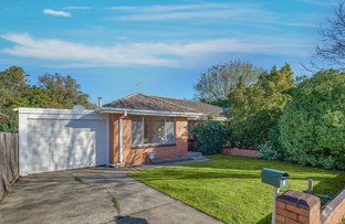 Picture of 5 Mansfield Street, Berwick VIC 3806