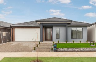 Picture of 71 Whiteleaf Drive, Mickleham VIC 3064