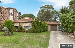 Picture of 28 Randall Avenue, Minto NSW 2566