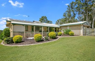Picture of 84 Mcintosh Creek Road, Jones Hill QLD 4570
