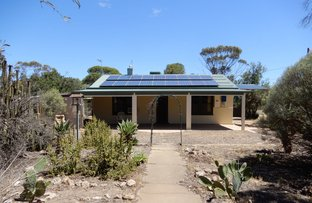 Picture of 35 Tickera-alford Rd, Alford SA 5555