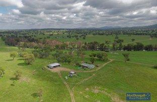 Picture of 1544 Georges Creek, Bundarra NSW 2359