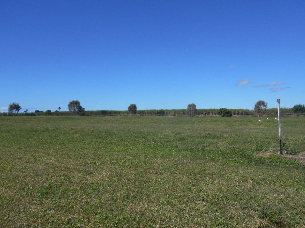 24 Riverdowns Drive, Halifax QLD 4850, Image 0