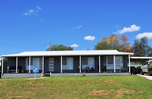 Picture of 5 Anderson Street, Gulgong NSW 2852