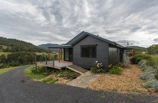 2903 Mount Darragh Road, Wyndham NSW 2550