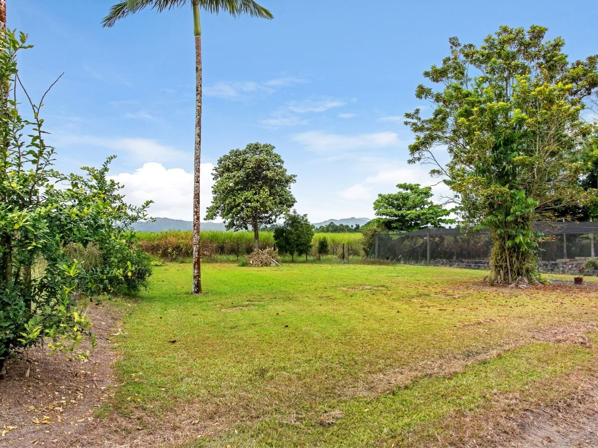 123-125 Howard Kennedy Drive, Babinda QLD 4861, Image 2