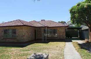 56 Hillsea Avenue, Clearview SA 5085