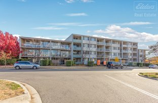 Picture of 62/39-43 Crawford Steet, Queanbeyan NSW 2620