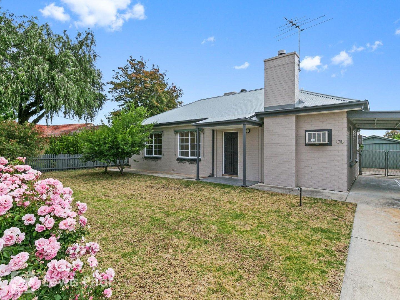 75 Pine Avenue, Glenelg North SA 5045, Image 0