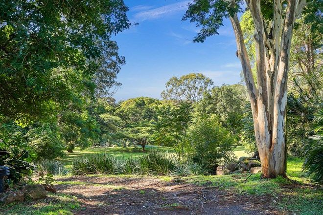 Picture of 245 Friday Hut Road, TINTENBAR NSW 2478