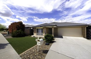 Picture of 3 Maza Place, Bonner ACT 2914