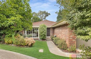 Picture of 7/978 Mountain Highway, Boronia VIC 3155