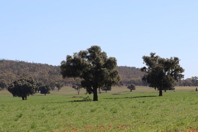 Picture of 3956 The Springs Road, MONIA GAP NSW 2675