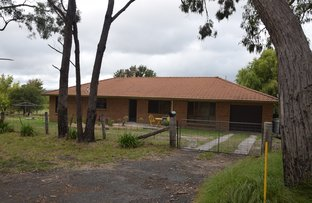 Picture of 49 Holleys Road, Tenterfield NSW 2372
