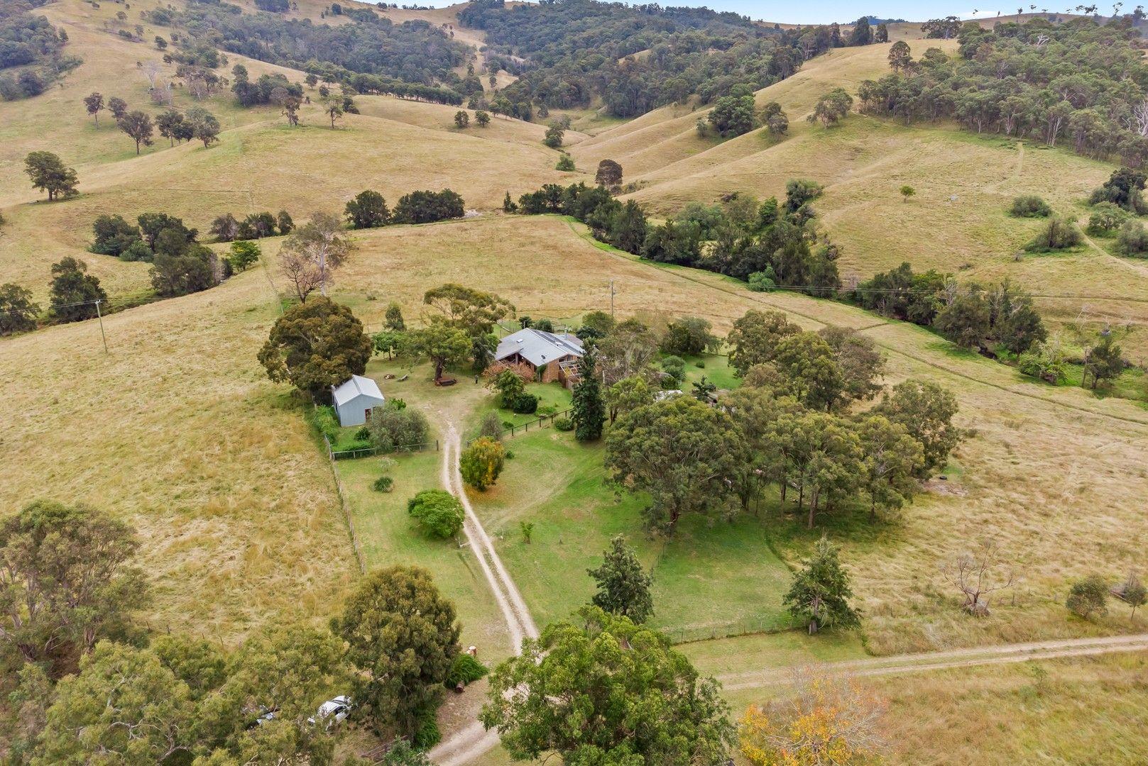 159 Goorangoola Creek Road, Singleton NSW 2330, Image 0