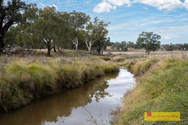 Picture of 298 Gollan Road, MUDGEE NSW 2850