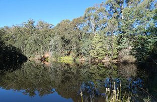 Picture of Hoddles Creek VIC 3139