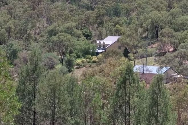 Picture of 238 Kerridene Road, PIALLAMORE NSW 2340