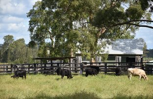 Picture of Lot 100 Rappville Rd, Rappville NSW 2469