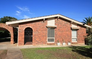 Picture of 1/49 Harvey Street, Collinswood SA 5081