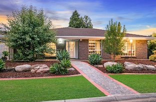 Picture of 16 Brunswick Terrace, Wynn Vale SA 5127