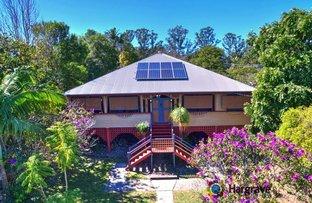 67 Kauri Street, Cooroy QLD 4563