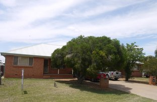 Picture of 1 & 2/155 MURGAH STREET, Narromine NSW 2821