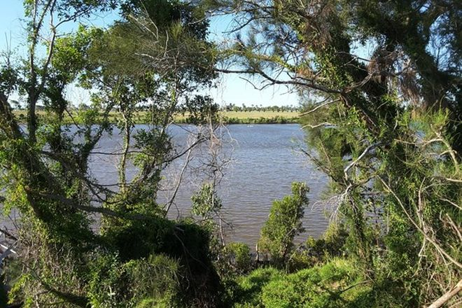 Picture of 3 THE PINES COURT, MILLBANK QLD 4670