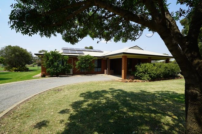Picture of Lot 2, 336 Petersham Road, LEETON NSW 2705