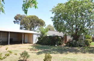 Picture of 15 Thomas Street, Waikerie SA 5330