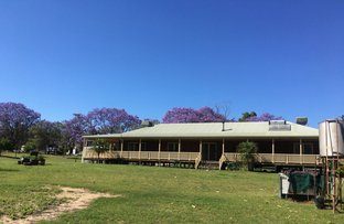 Picture of 663 Bosnjaks Road, Glenarbon QLD 4385