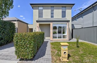 Picture of 16 Shalford Terrace, Campbelltown SA 5074