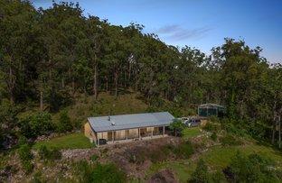 Picture of 1331 Murrays Run Rd, Laguna NSW 2325