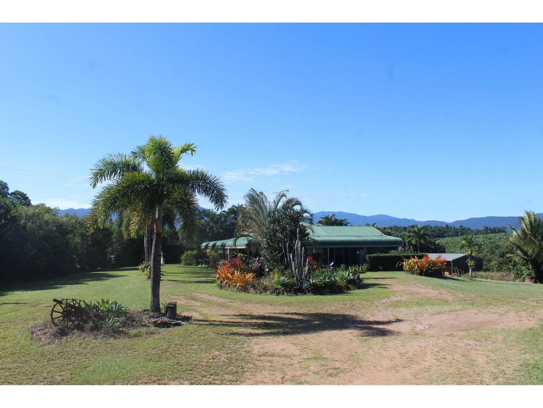 173 Kinjun Road, Dingo Pocket QLD 4854, Image 1