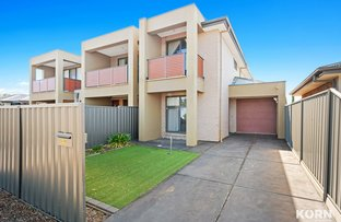 Picture of 43B Dwyer Road, Oaklands Park SA 5046