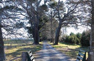 Picture of 236 Bundanoon Road, Exeter NSW 2579