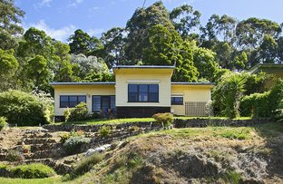 Picture of 105 Thorpdale Road, Trafalgar VIC 3824