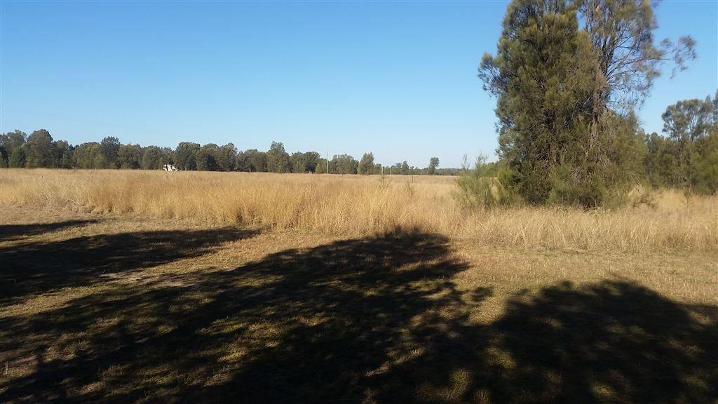 125 Liberator Place, Leyburn QLD 4365, Image 1