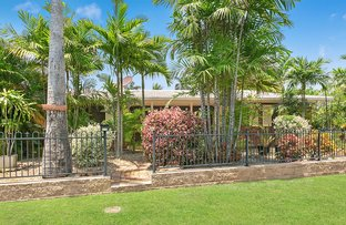 Picture of 470 Eichelberger Street, Frenchville QLD 4701
