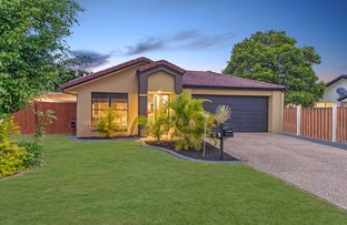 Picture of 13 Serafina Dr, Helensvale QLD 4212