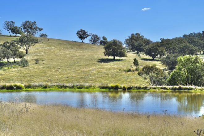 Picture of 794 Reedy Creek Road 'Oaklands', MANDAGERY NSW 2870