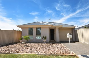 Picture of 47a Elliott Avenue, Holden Hill SA 5088