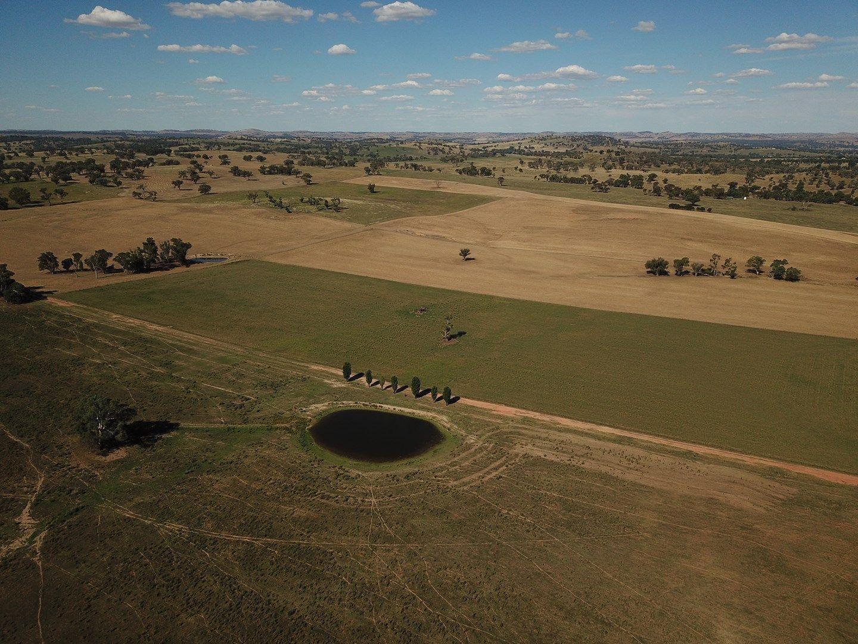 640 Dirnaseer Road, Cootamundra NSW 2590, Image 0
