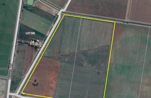 Picture of 166 & 167 Farm 1997 Grigg Rd, Leeton NSW 2705